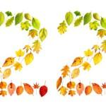 Свет и тени числа  «Двадцать два»